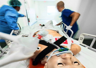 Hal S3201 HAL® S3201 Advanced Multipurpose Patient Simulator